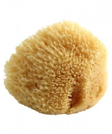Naturalna Gąbka Morska dla Dzieci i Niemowląt, 0m+Poupy