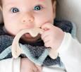 Śliniak bambusowy z gryzakiem klonowym SupeRRO Baby eco Lullalove