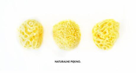 Naturalna gąbka morska   Honeycomb   Lullalove