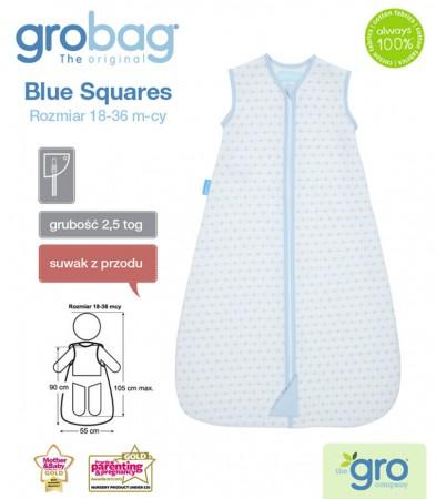 Śpiworek do spania 18-36m Gro Bag | 2,5 tog | Blue Squares Jacquard | Gro Company